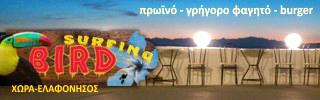 Surfing Bird, Ελαφόνησος